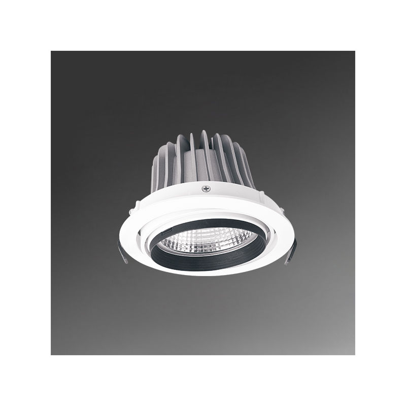 downlight ajustable  - AVB