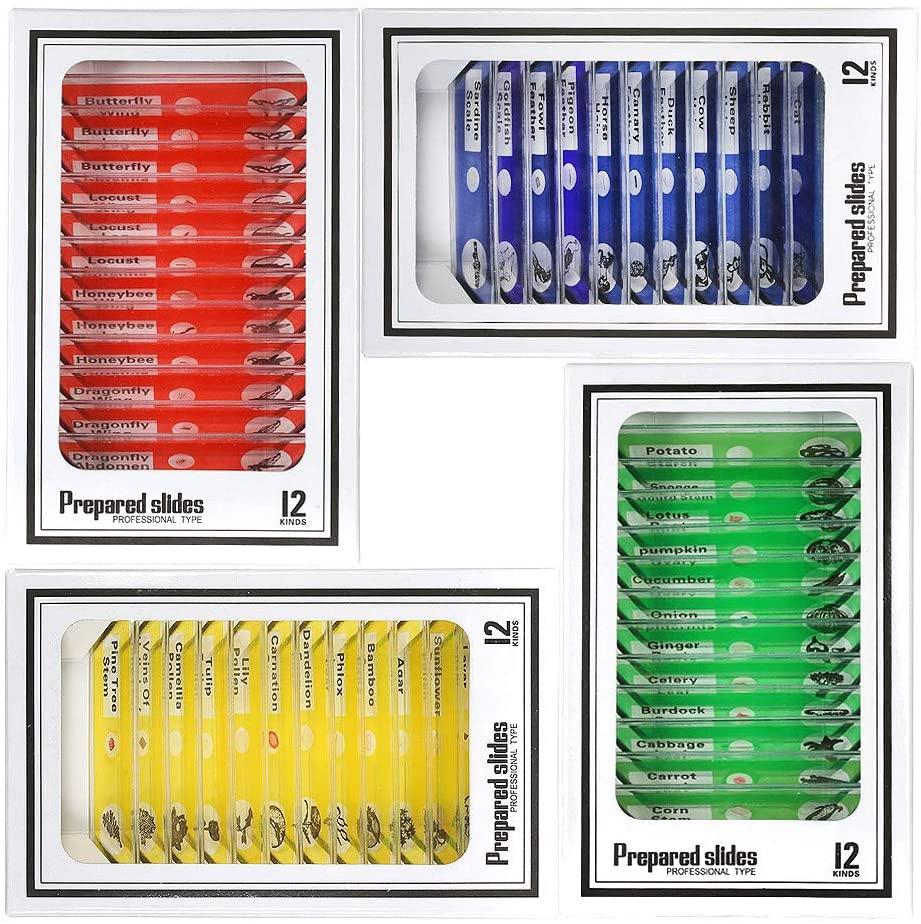 Niños Microscopio Preparado Diapositivas, Bysameyee Plástico 48 Piezas Animales Insectos Plantas Flores Muestras de muestras para Estudiantes Educación en el hogar Biología Ciencia Programas