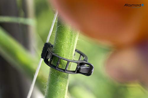 ARaymond Clips de Invernadero de 21mm para Tomates, Pepinos y Pimientos, 100 Unidades, Clips para Sujetar Plantas.